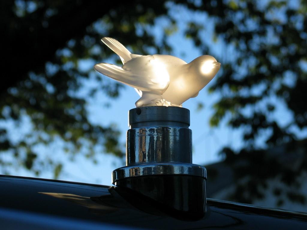 04 Lalique Dove